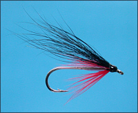 Sea Trout Fly in daylight